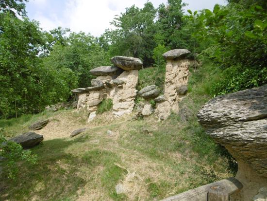 Riserva Naturale dei Ciciu del Villar: I funghi