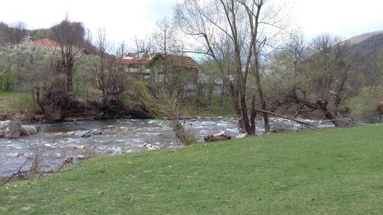 Spa Hotel Planinata: surrounding