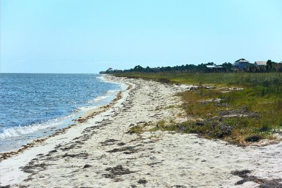 Bald Point State Park: the beach