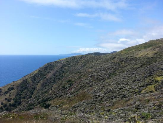 Cape Tours Petricevich: Cape Reinga