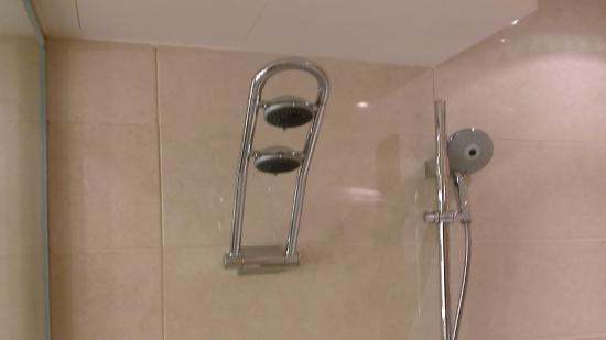 the pivotable shower head upper position picture of radisson blu hotel d. Black Bedroom Furniture Sets. Home Design Ideas