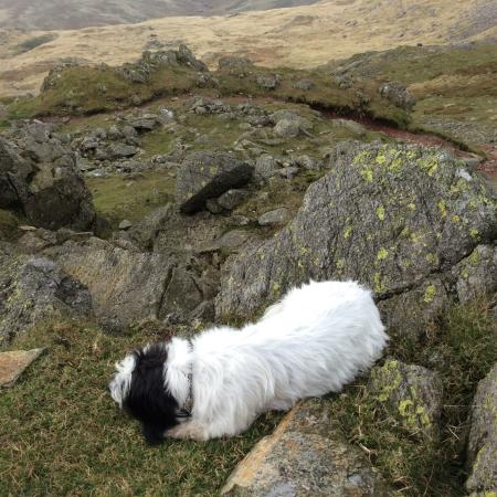Seascale, UK: Having a quick rest break on crinkle crags