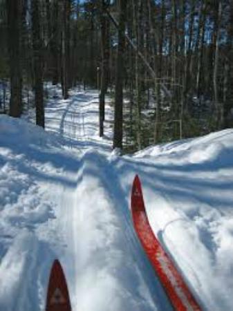Days Inn & Suites Rhinelander: Winter Sports!