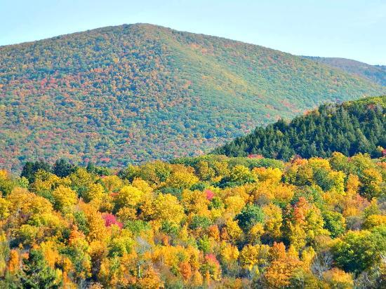 Adams, MA: Fall foliage