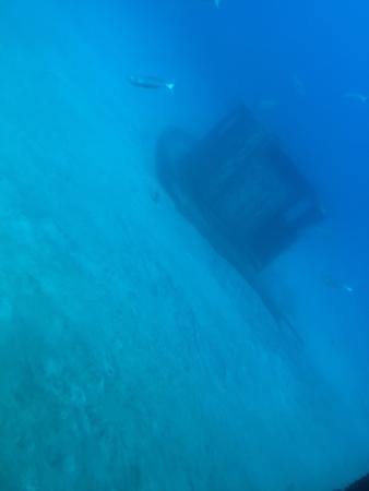 Submarine Safaris : photo3.jpg