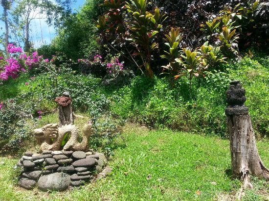 Maui Garden Of Eden - Botanical Gardens & Arboretum - Picture of ...