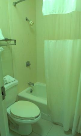 Baymont Inn & Suites Covington: Bathroom was a little dated but clean. Shower head was better than I have seen in upscale hotels