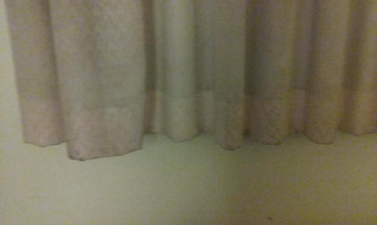 Rodeway Inn : The dirty greasy curtains that matched our comforter.  Pic does not justice.