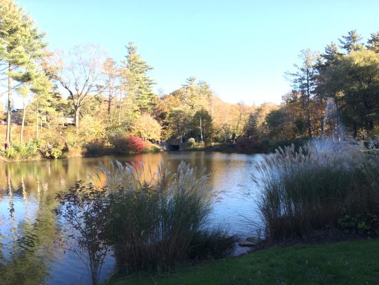 Blowing Rock, Carolina del Norte: The park has a lovely duck pond and fountain.