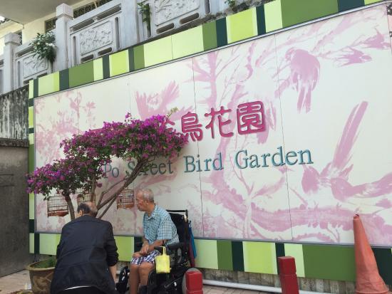 Yuanpu Street Bird Park : นกสวยๆเต็มเลยครับเดินเล่นสบายๆมีของเกี่ยวกับการเลี้ยงนกหลากหลายเลย