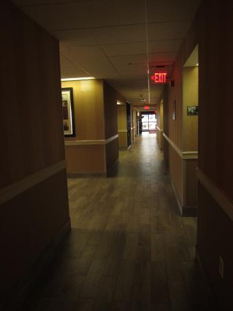 Hampton Inn Miami-Airport West: corredor do hotel