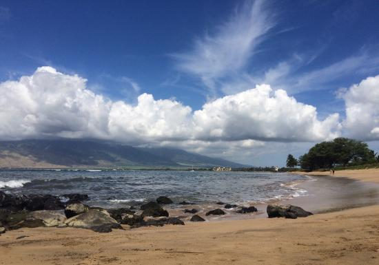 Maui Beach Vacation Club: photo2.jpg