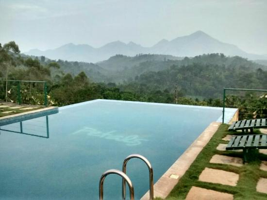 Infinity Pool And The Accomodation Complex Picture Of Petals Resorts Wayanad Kalpetta