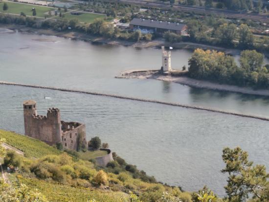 panorama sul Reno e  rovine castello Ehernfels