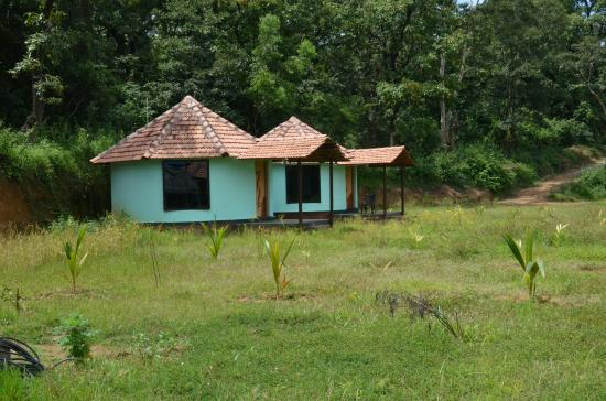 Dandeli Dreams Homestay