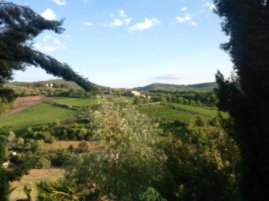 Fattoria Poggiarelli : Magnificent views from the terrace