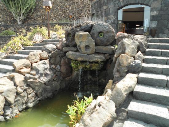 Tipi di cactus picture of jardin de cactus guatiza for Jardineras de cactus