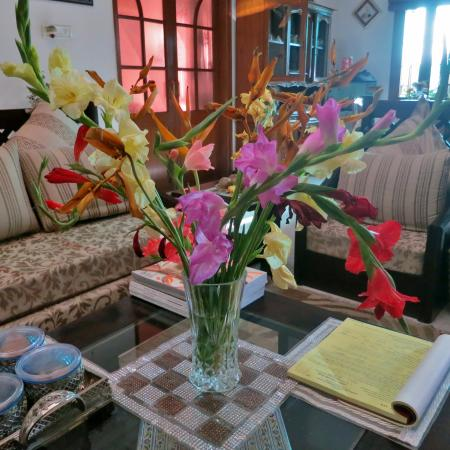 Jaipur Friendly Villa: Beautifully appointed lounge area