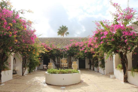 Hacienda de San Rafael : Courtyard