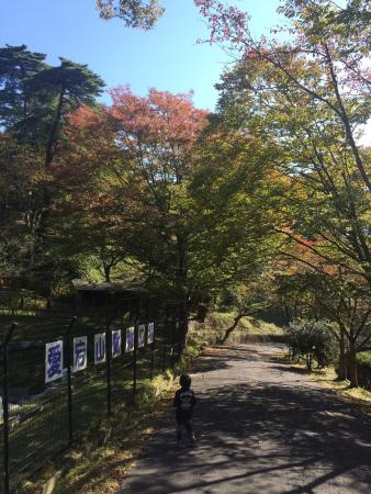 Aigoyama Park