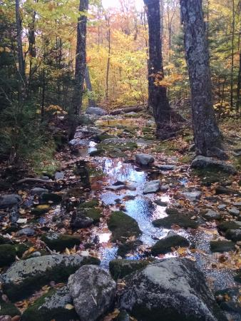 Jaffrey, NH: Scenic Red dot trail was less crowded
