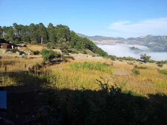 Gite Azilane: Une vue vers l'horizon depuis la fenêtre