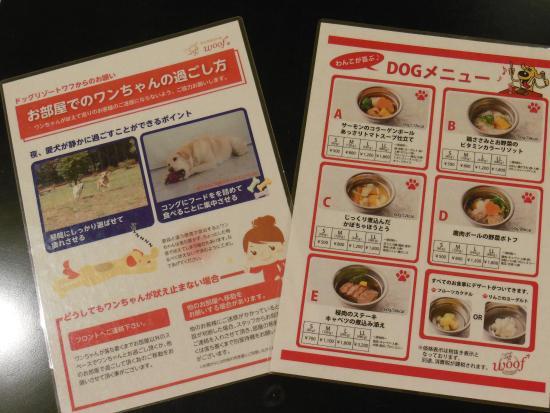 Minamitsuru-gun, Japón: 犬のリゾートならでは