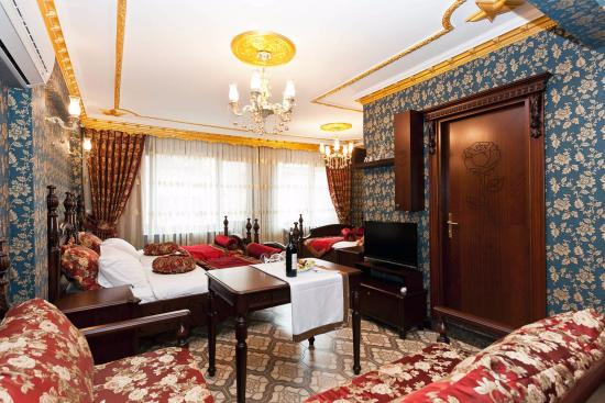 Delux Family Apartmen Picture Of The First Ottoman Apartments Istanbul Tripadvisor