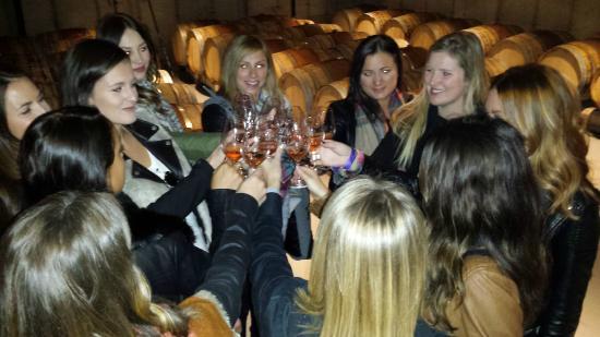 Niagara Grape & Wine Tours: Cheers to a grape day