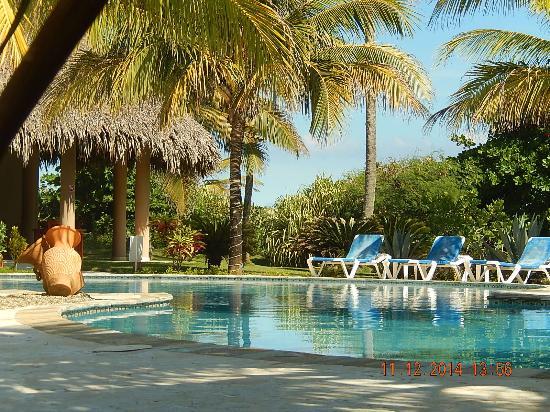 Oasis Cabarete Beach Resort : piscine en avant du bar