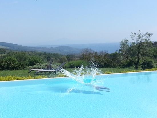 Pool Picture Of Griffin 39 S Resort Orvieto Tripadvisor