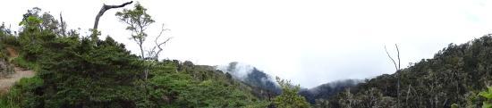 Chirripo National Park: paramo