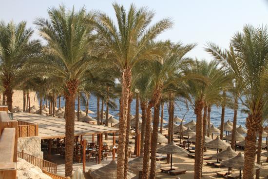Strand Bild Von The Grand Hotel Sharm El Sheikh Scharm El Scheich