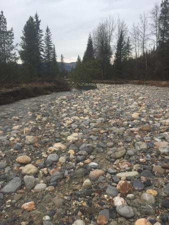 Waitabit Creek: photo2.jpg