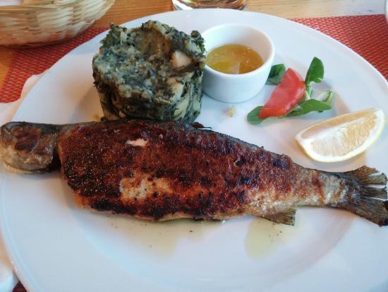 Herceghalom Hungary  city photos gallery : gyula s herceghalom hungary level contributor 7 reviews 4 restaurant ...