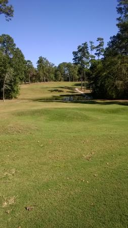Foto de Wedgewood Golf Course