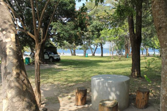 Chinteche, Malawi: Green grass - what a treat!