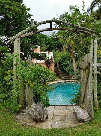 St Helier Bed & Breakfast : The entrance to the secluded pool