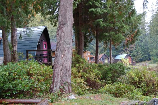 Egmont, Canada: Cabin 1  - with pink door