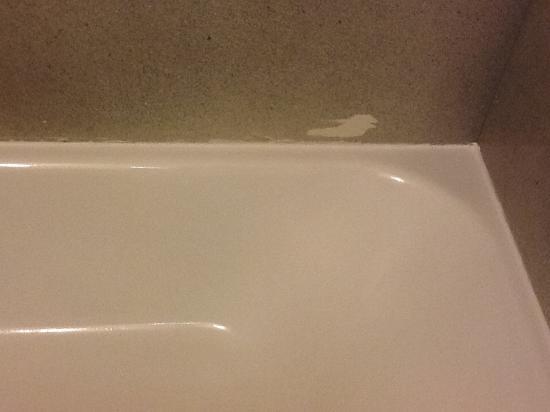 River Grove, IL: El baño estaba limpio, pero tenía manchas de pintura
