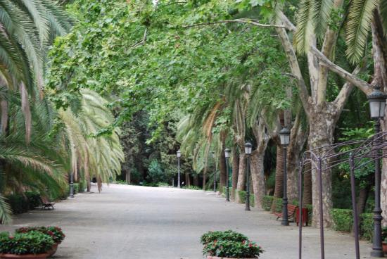 La concepci n picture of la concepcion jardin botanico for Bodas jardin botanico malaga