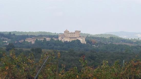 Vimbodi, إسبانيا: Castell de Riudabella