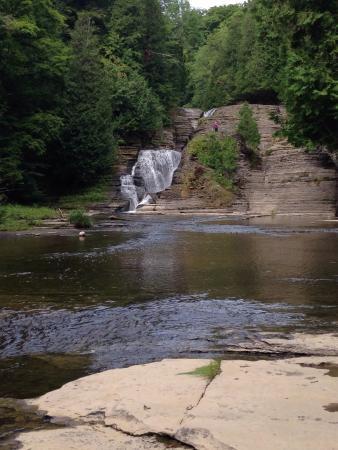 Whitaker Falls