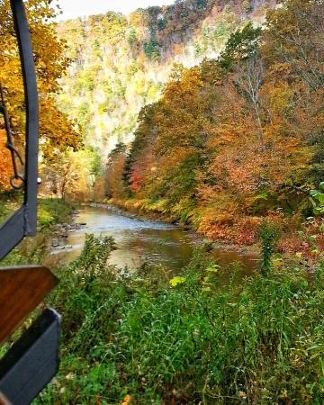 Tioga, Пенсильвания: IMG_20151017_144928_large.jpg
