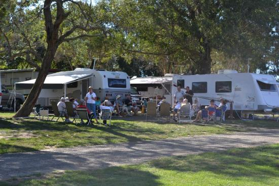 Moss vale camping show