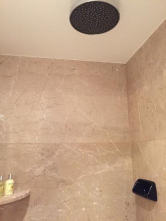 Rain Flow Shower Head.High Flow Rain Shower Head Picture Of Four Seasons Hotel Ritz