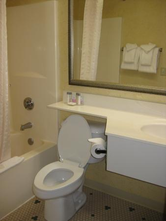 The Schoenbrunn Inn & Conference Center: Bathroom with toiletries