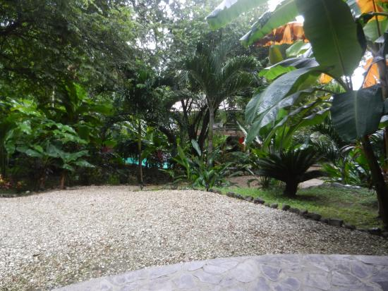 Manala Hotel: View from patio
