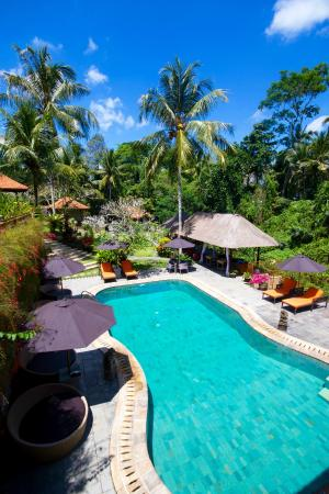 Hotel Villa-Ubud: Pool Area