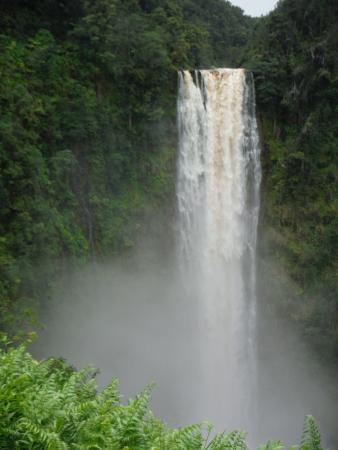 Keaau, Hawái: Akaka Falls